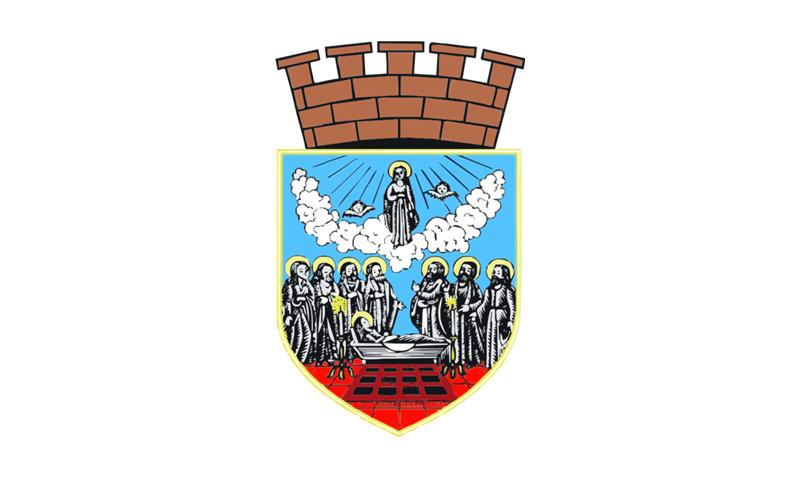 Знаме_на_Зрењанин_-_Србија